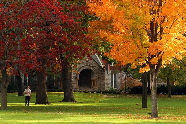 Photo of campus in fall with colored leaves on the trees